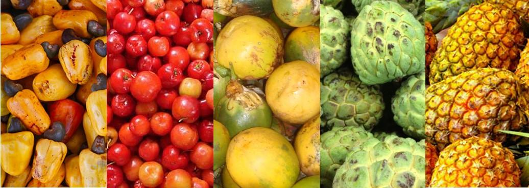Fruits du Brésil, caju, acerola, maracuja, graviola, abacaxi