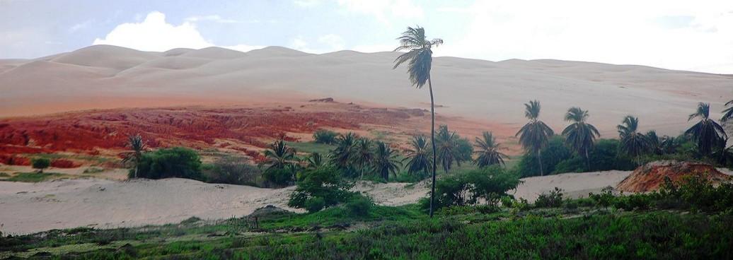 Désert d'Alagamar, dunas de Rosado, Bresil Rio Grande do Norte