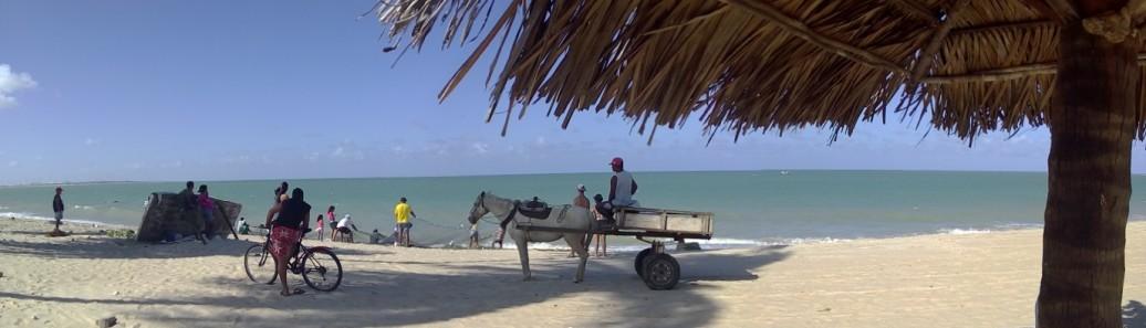 plage de Pititinga au nord de Natal